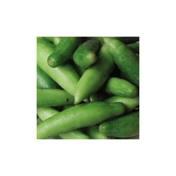 Tendli (Ivy Gourd) - 1lb