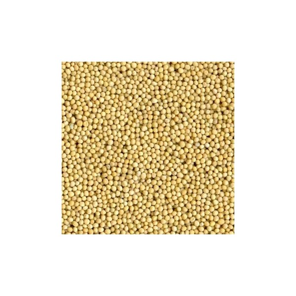 Yellow Mustard Seed (Yellow Raai)
