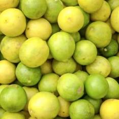 Indian lemons