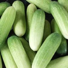 Cucumber (Kakri) - 400g