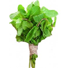 Fresh Mint Leaves, 1 Bunch