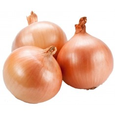 Brown Onions, 1KG