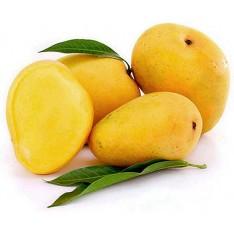 Indian alphonso mangoes in Hong Kong