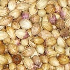 Coriander Seed Whole (Sabut Dhania)